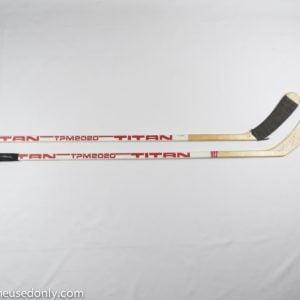 Wayne_Gretzky_LA_Kings_Sticks_Titan_Todd_Bargman